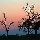 Leopard Hills Sunset by jozi1