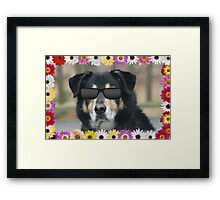 Maybe she won't notice me! Framed Print