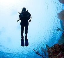 Diver Silhouette by Todd Krebs