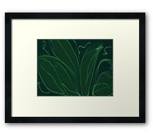 Leaves of green.. Framed Print