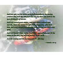 Genesis 1 20-23 And God said, Let the waters bring forth abundantly Photographic Print