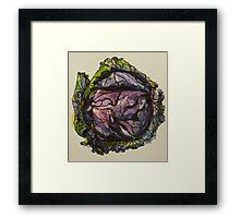 Purple cabbage. Elizabeth Moore Golding 2012Ⓒ Framed Print