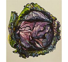Purple cabbage. Elizabeth Moore Golding 2012Ⓒ Photographic Print