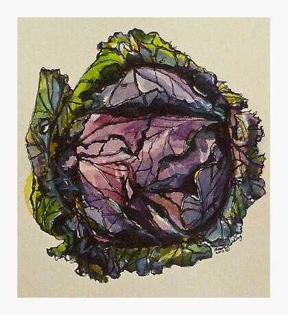 Purple cabbage. Elizabeth Moore Golding 2012Ⓒ Photographic Print