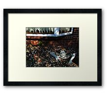 The Latest in Home Security Framed Print