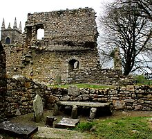 St.Mullin's Monastary - Ruins & Grave Markers by rsangsterkelly