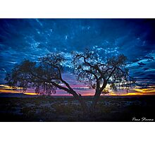 OutBack Dawn Photographic Print