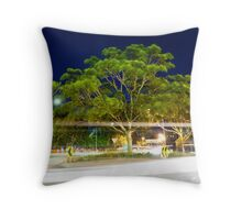 11th April 2012 Throw Pillow