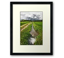 Straight from the source Framed Print