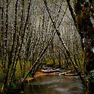 Just The Place For Me by Charles & Patricia   Harkins ~ Picture Oregon