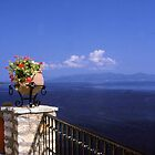 Flowers, Sea & Sky by Francis Drake