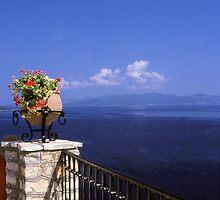 Flowers, Sea & Sky by Francis Drake