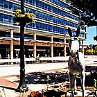 PPL plaza, Allentown by djphoto