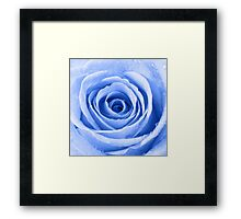 Blue Rose with Water Droplets Framed Print