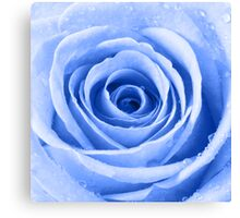 Blue Rose with Water Droplets Canvas Print