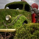 Green car by Richard Fortier