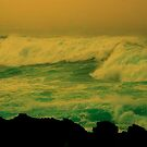 Mendocino Coast XXXII by Ascender Photography