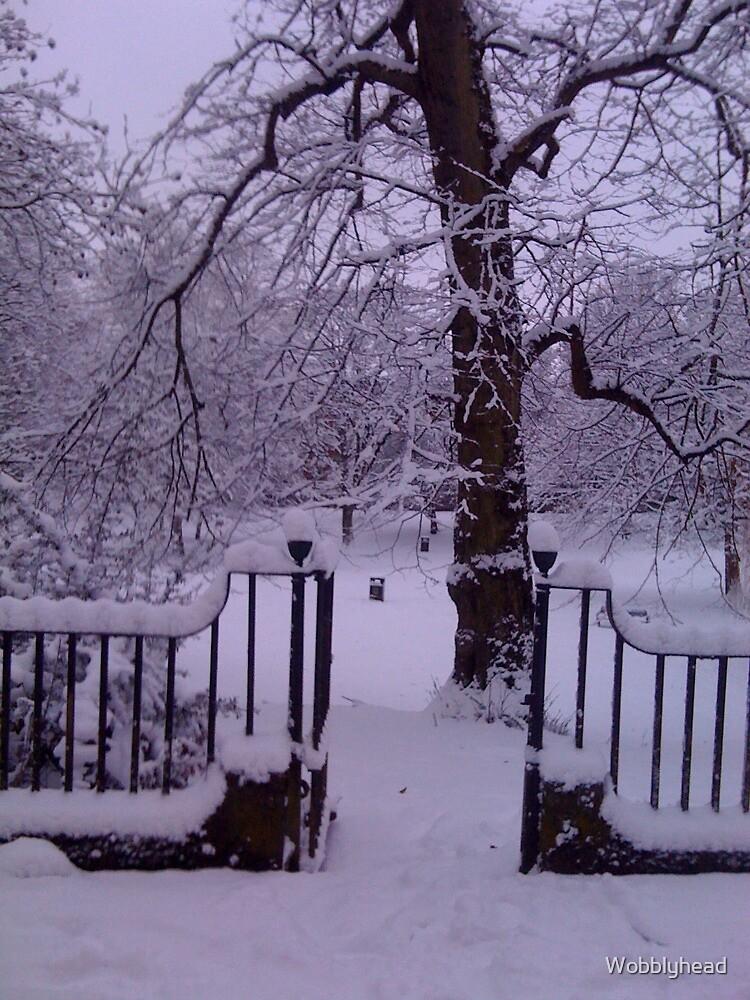 Snow Gate by Wobblyhead