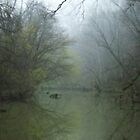 Foggy Tinker Creek~ by virginian