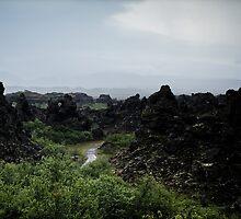 Crazy views of Iceland, Dimmuborgir. by Cappelletti Benjamin