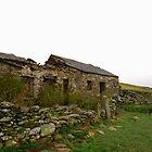 abandoned welsh long house by Cat Edwards