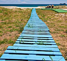improvised boardwalk by meirionmatthias