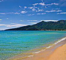 the golden beach by meirionmatthias