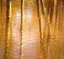 WaterReflections.... 05 by Mike  Waldron