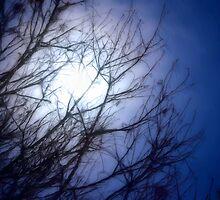 A Blue Moon by Brian Gaynor