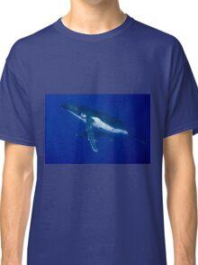 Humpback Whales, Vava'u, Tonga Classic T-Shirt