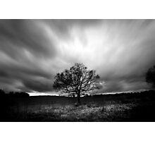 The Lone Tree Photographic Print