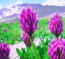 Tundra Flowers by mokacat