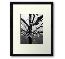 Collecting Ice Framed Print
