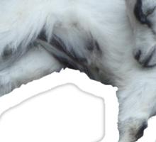 goat Sticker