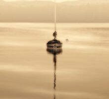 dreamy misty windermere morning by meirionmatthias