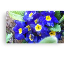 fun flowers Canvas Print