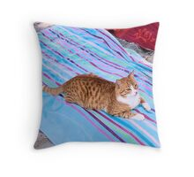 Purrfect-Share Your Towel? Throw Pillow