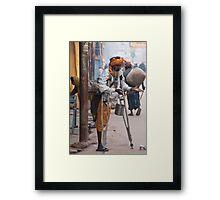 One Legged Beggar Framed Print