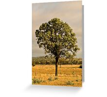 Tree (Bonshaw, NSW) Greeting Card