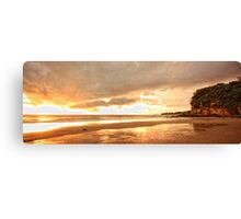 Morning Glory - Jenny DIxon  Canvas Print