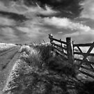 Exmoor Path by Greg Webb