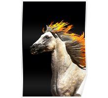 Pyrrhos Poster