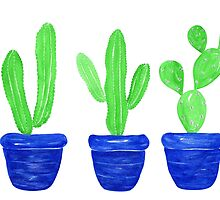 Cacti Trio - White by sweetblissart