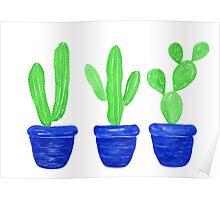 Cacti Trio - White Poster