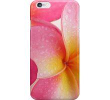 Frangipani iphone iPhone Case/Skin