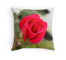 Roses Are In Bloom Throw Pillow