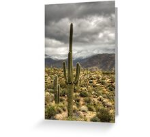 It Does Snow in the Desert Greeting Card