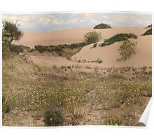 Lake Mungo Sandhills Poster