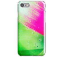 The Cactus iPhone Case/Skin