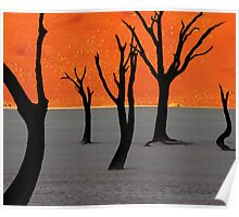 Dead Vlei Tree Skeletons Poster